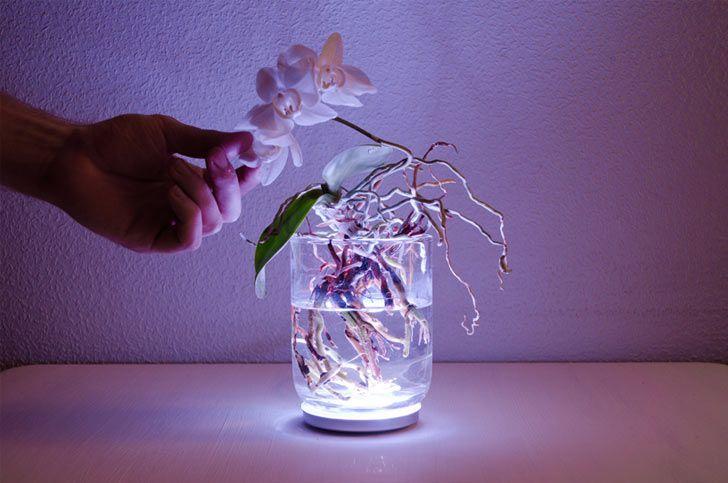 aura-touch-lamp