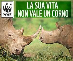 WWF sua vita non vale un corno