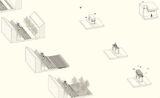 diverse-networks-urban-transit-biodiversity-strategies.jpg.492x0 q85 crop-smart