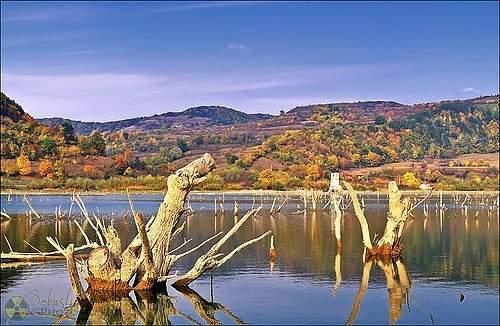 foreste 2 lake bezid