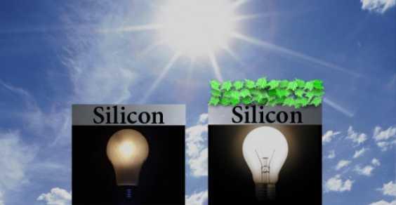 spinaci fotovoltaico