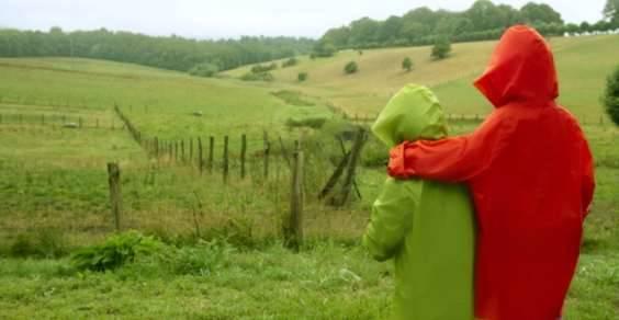 greenpeace giacche hm