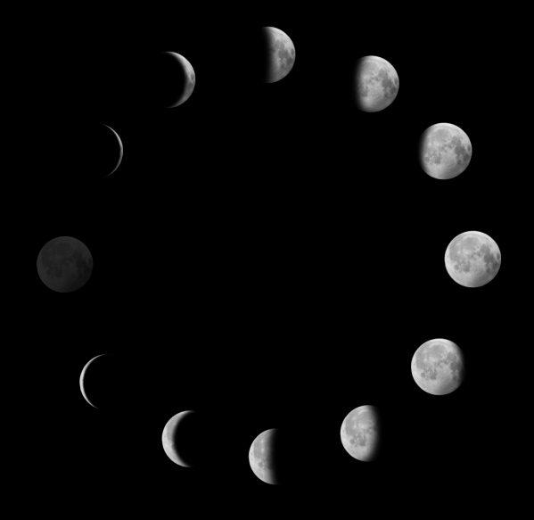 fasi lunari influenza