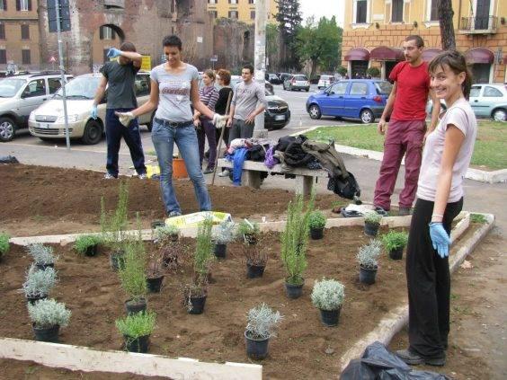 guerrilla gardening roma