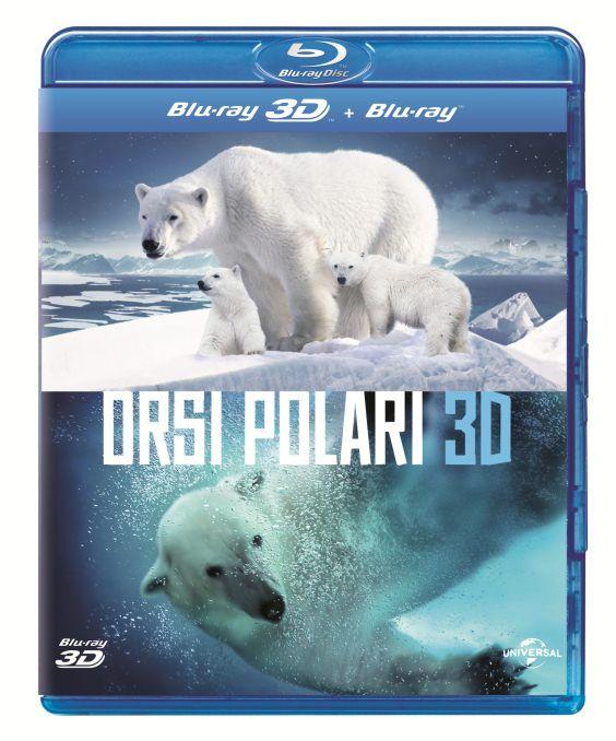 orsi polari 3d