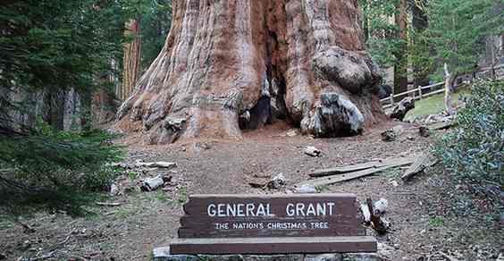 General Grant - Foto: Flickr.com