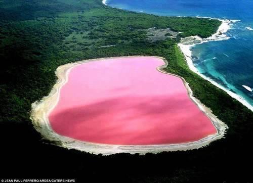 lake hillier - fonte foto: twistedsifter.com