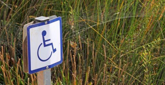 giornata mondiale disabili