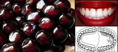 Segnatura della forma: i semi del melograno come i denti