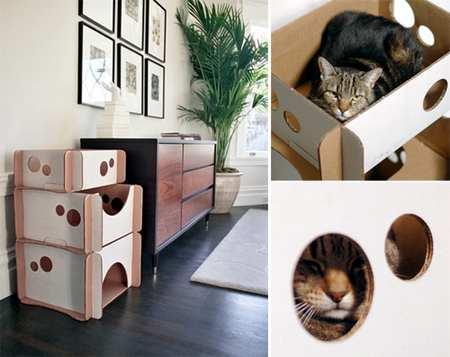 cuccia gatti scatola cartone