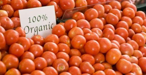 pomodori biologici