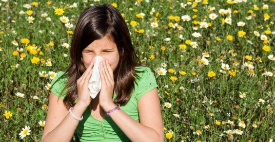 allergie pollini alimenti