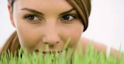 erba di grano viso