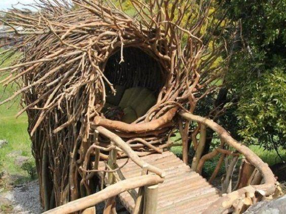nido umano4