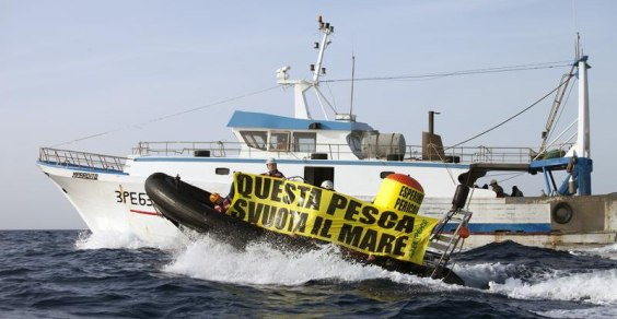 cover Greenpeace Sicilia