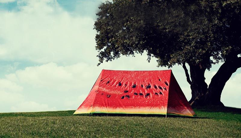 field-candy-tents cocomero