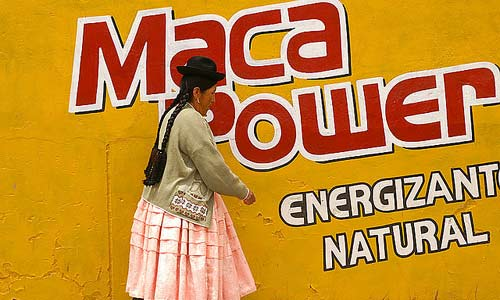 maca-power
