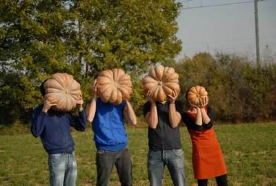 Aboboras gruppo Bio-Folk