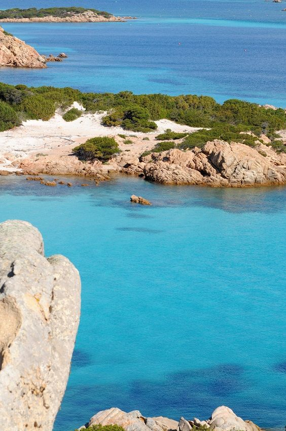 Island of Budelli - Spiaggia Rosa by Mirko Ugo