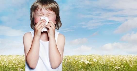 allergie antistaminici naturali - fonte foto: abcnews.go.com