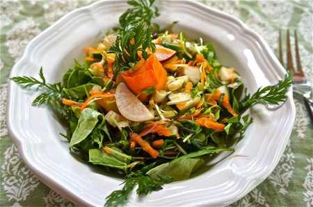 insalata 6 spinaci zenzero