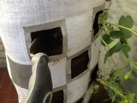 orto nei sacchi preparazione