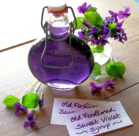 sciroppo viole fonte foto: webecoist.momtastic.com