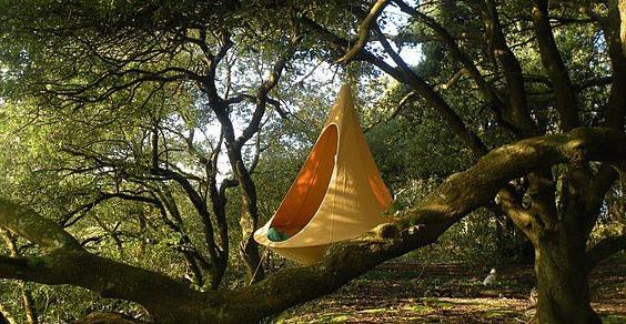 tenda Cacoon