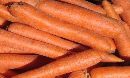 b2ap3_thumbnail_carote-arancio.jpg