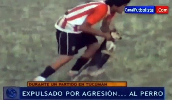 cane argentina