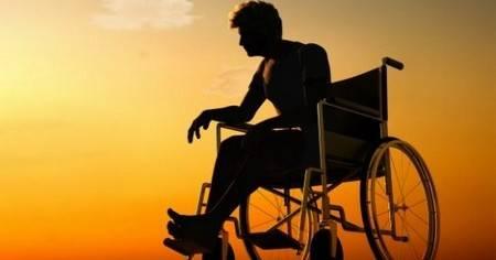 cartone sedia a rotelle