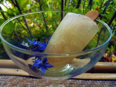lemon limoncello ice pop