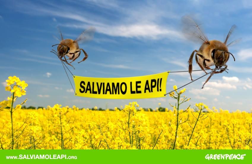 salviamo le api2