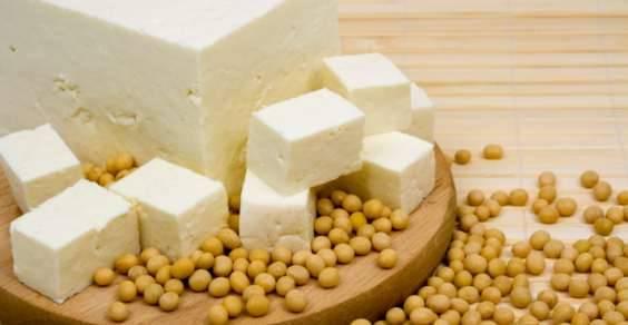 fonti vegetali di proteine