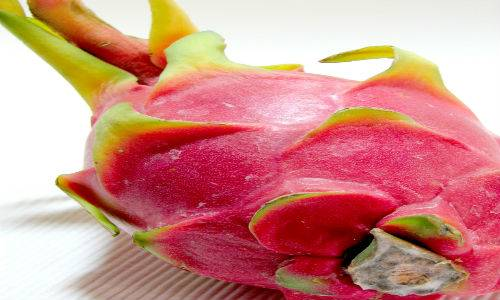 b2ap3_thumbnail_dragon-fruit.jpg