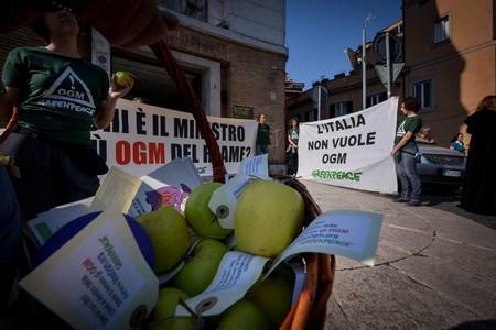 greenpeace lorenzin ogm 2