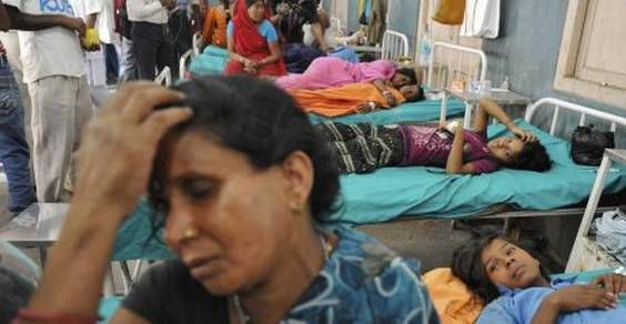 india avvelenamento pesticidi