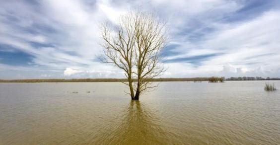 ispra alluvioni