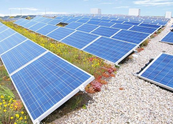 giardino pensile fotovoltaico