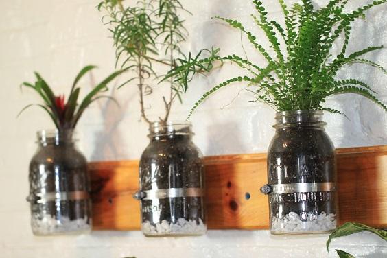 mini giardino erbe aromatiche