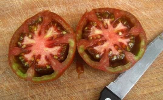 semi pomodoro 1
