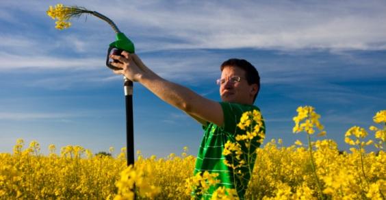 biocarburanti-parlamento-europeo