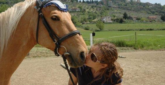 cavalli unicorno
