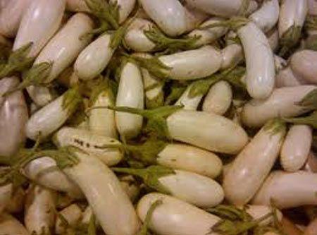 melanzane-bianche