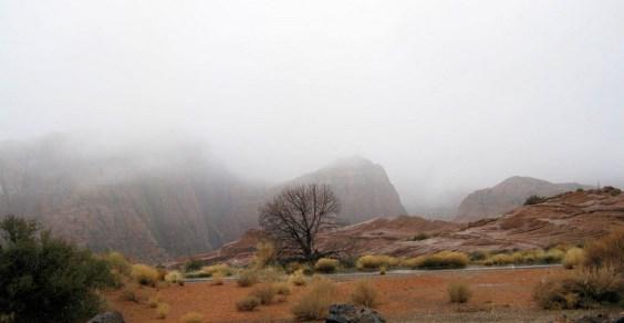 nebbia deserto