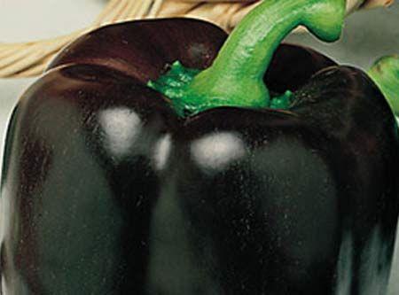 peperone-nero