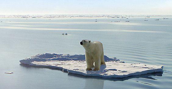 rapporto ipcc global warming