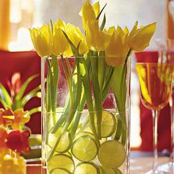 tulipani limoni