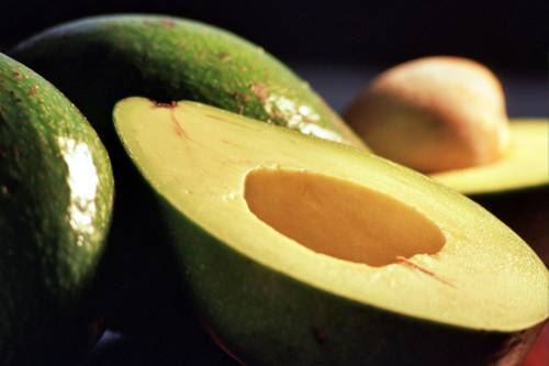 b2ap3_thumbnail_avocado.jpg