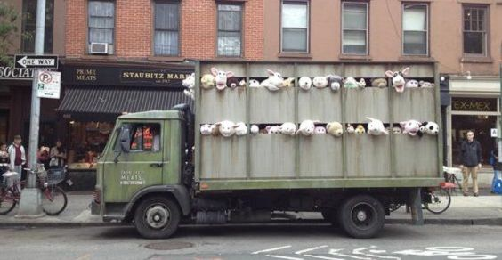camion peluche